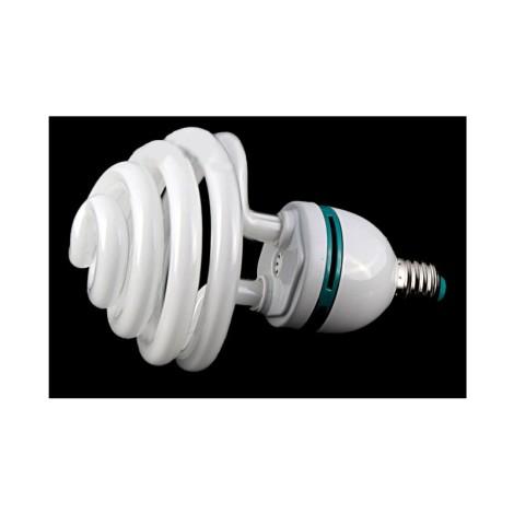 Żarówka światła stałego E27  36W 5500K
